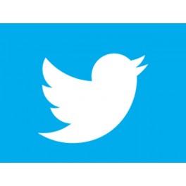 Накрутка читателей в твиттере (Twitter)